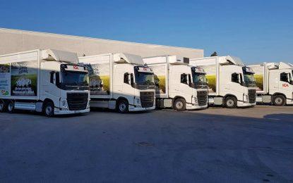 Volvo Trucks i ICA Sweden sarađuju na alternativnim transportnim rješenjima – voziće na biogas i na struju