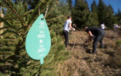 """Toyota BiH nastavlja sa akcijom pošumljavanja u sklopu projekta """"Jedan hibrid – jedno stablo"""" [Galerija]"""